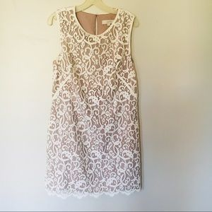 Gorgeous lace dress from LOFT!